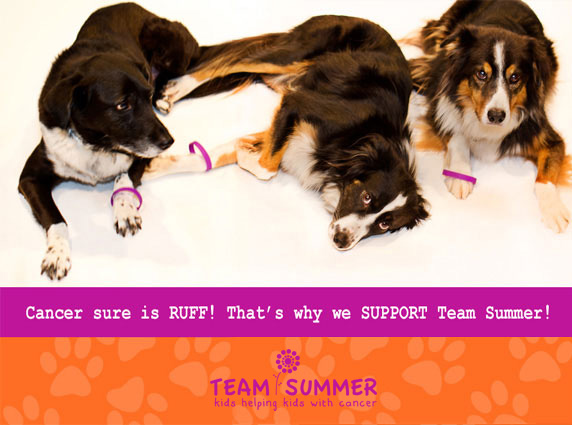 Support Team Summer