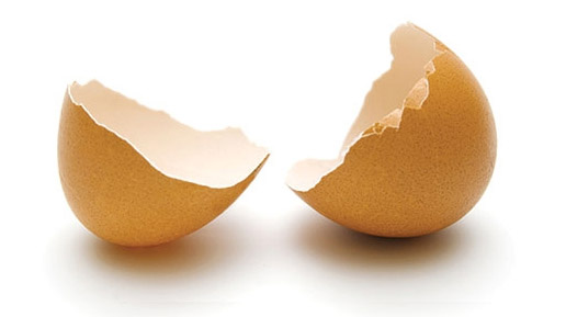 broken-egg-shell